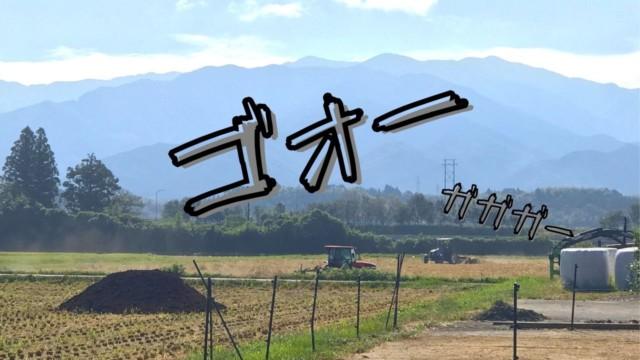 田舎暮らしの作業中のBGMは自然の音